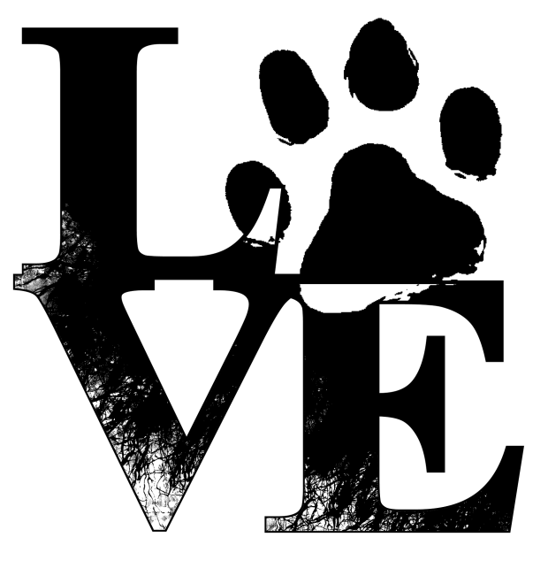 love-825283_1920.png